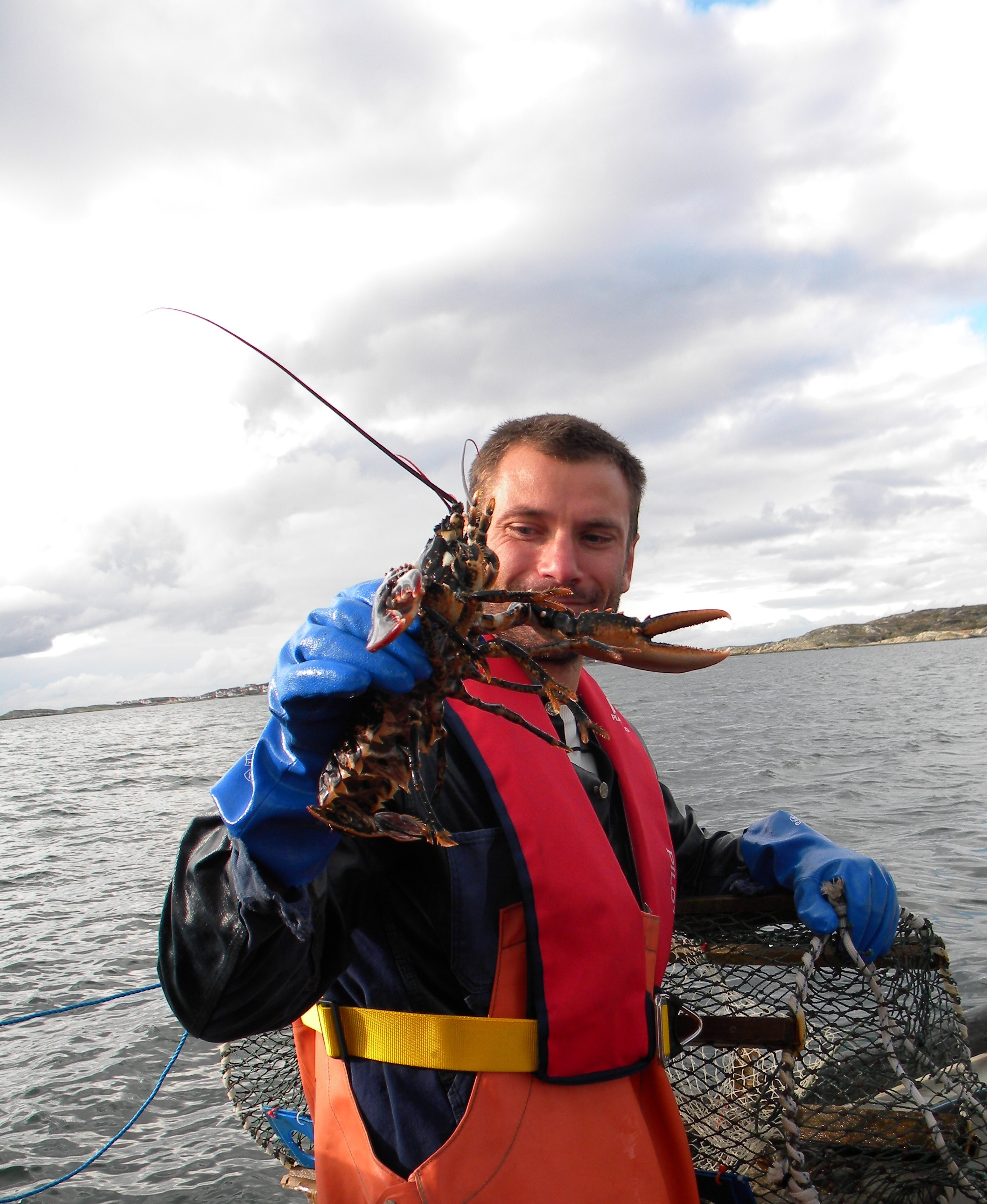 Upplev hummerfiske på västkusten med Seaside Shuttle